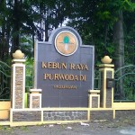 contact person kebun raya purwodadi