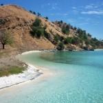 pulau komodo backpacker